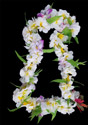 White Plumeria Jasmine Flower Lei with Orchid